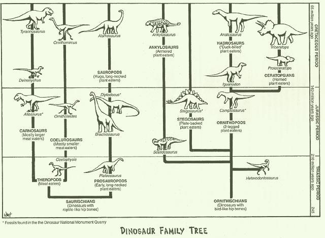 File:Dino family tree.jpg