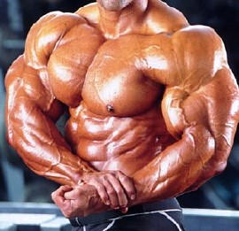 File:Muscle contraction.PNG