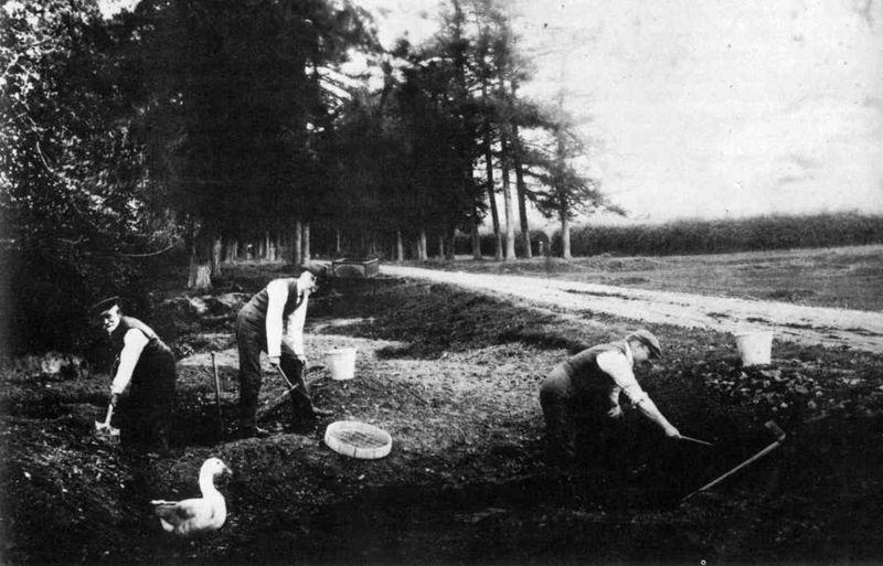 File:Piltdown excavation.jpg