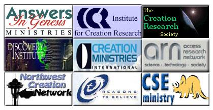 Organizations logos.jpg