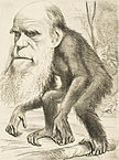 File:108px-Editorial cartoon depicting Charles Darwin as an ape (1871).jpg