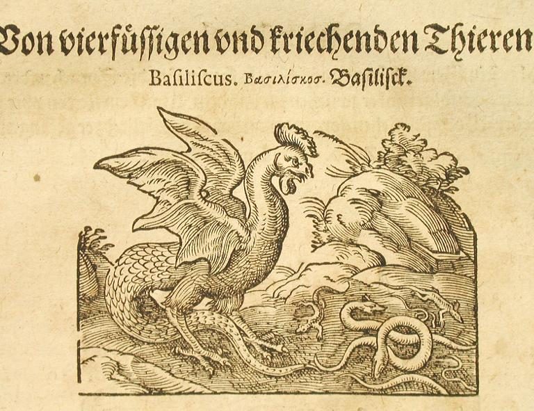 File:Basilisk from Historia Naturalis.jpg
