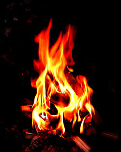 Fire is one of the most common types of combustion