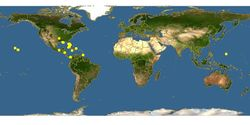 GreenhouseFrog PointMap.jpg