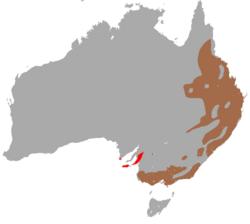 Koala habitat range map.png