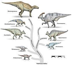 Hadrosaur-tree.jpg