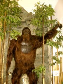 Gigantopithecus2.jpg