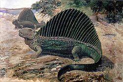 Dimetrodon painting.jpg
