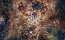 Tarantula nebula.jpg