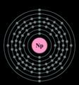 Electron shell neptunium.png