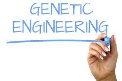 Genetic engineering 1.jpg
