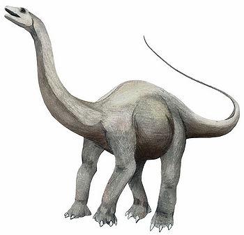 Apatosaur.jpg