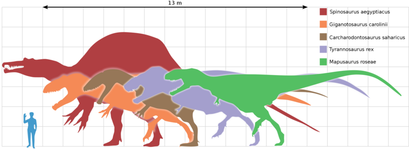 File:Largest theropods.png