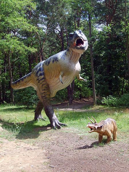 File:Tyrannosaur Ceratops models.jpg