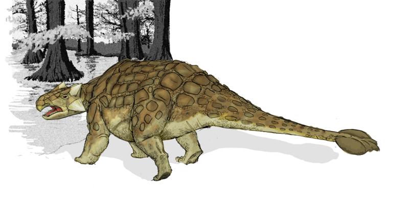 File:Ankylosaurus dinosaur.png
