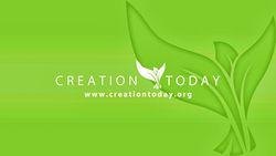 Plugin.video.creationtoday org.jpg