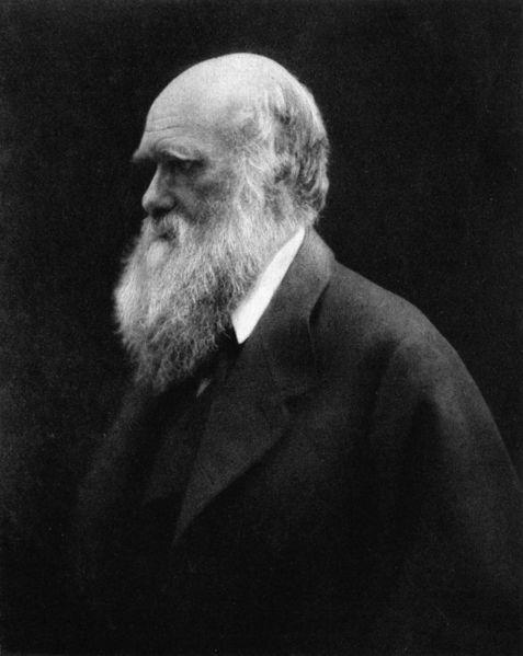 File:Charles Darwin by Julia Margaret Cameron 2.jpg