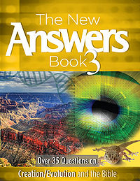 New Answers Book 3.jpg