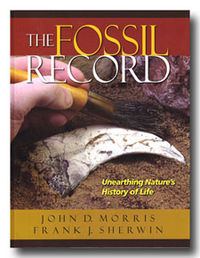 The fossil record.jpg