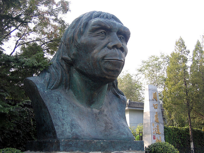File:Peking Man at Zhoukoudian.jpg