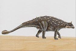 Анкилозавр (реконструкция)