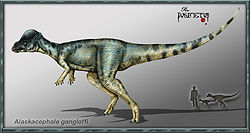 Pachycephalosaur.jpg