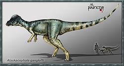 Pachycephalosaur.jpg