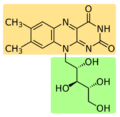 Riboflavin Molecular Structure.png