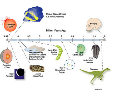 Theory of evolution - CreationWiki, the encyclopedia of creation ...