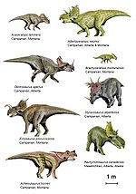 Ceratops creationwiki the encyclopedia of creation science - Liste des dinosaures carnivores ...