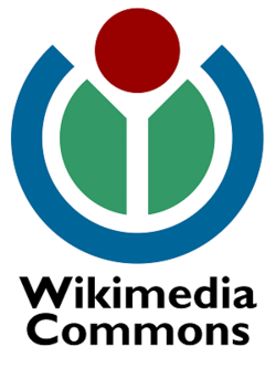 Wikimedia Commons.png