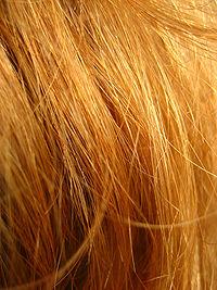 Redhead Hair.jpg
