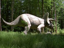 Triceratops model.jpg