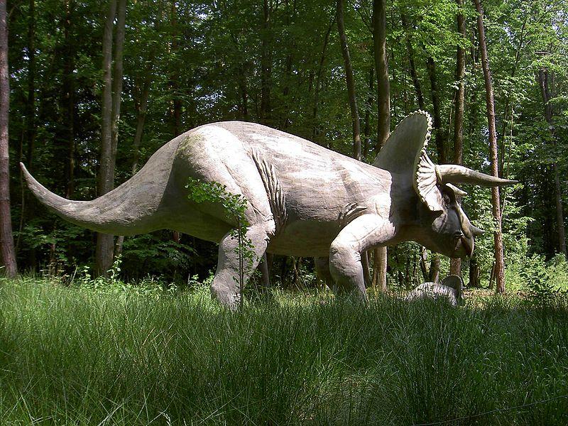 File:Triceratops model.jpg