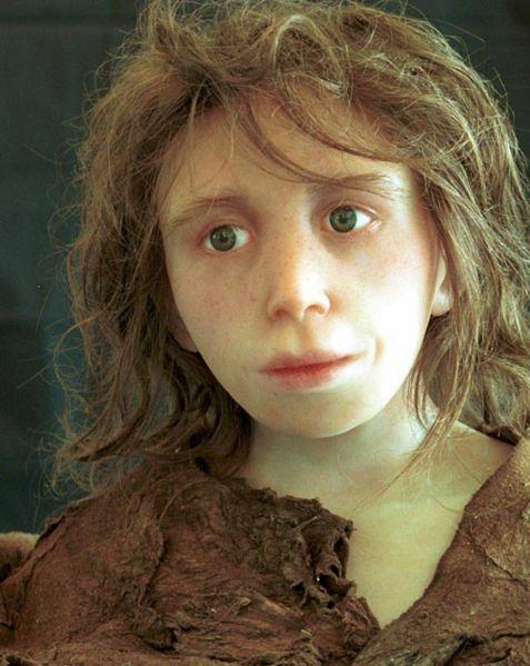 File:Neanderthal child.jpg