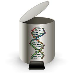 Junk DNA.png